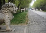 Animal statues (dating to 1540) line the Spirit Way.