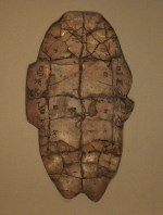 An oracle bone from the Shang dynasty (a turtle plastron).
