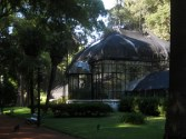 The botanic garden, Palermo.