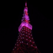 Tokyo Tower. The one in Paris is a little better somehow.